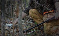 Grouse and woodcock hunting tips