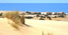 veduta dalle dune  view from dunes