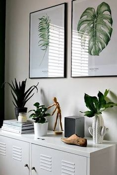 Image result for white and green study