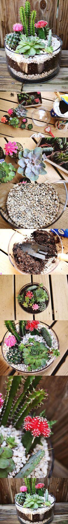 Comment monter un terrarium! Les étapes et des modèles pour vous inspirer! - Bricolages - Trucs et Bricolages