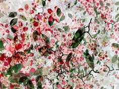 Christine Jaschek, Cherry Blossom, 2010 / 2014 © kr.lumas.com/ #Lumas