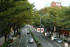 Omotesando (表参道) is an avenue, subway station and neighborhood in the Minato and Shibuya wards in Tokyo stretching from Harajuku station, specifically, the foot of Takeshita Street, to Aoyama-dori where Omotesandō station can be found. Zelkova trees line both sides of the avenue. Around 100,000 cars drive down the main street daily.