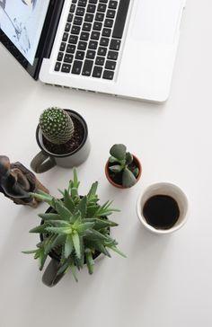 Urban Jungle Bloggers: Plants & Coffee via @ilariafatone