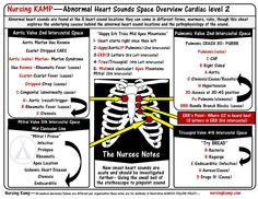 Over 4000 NCLEX questions, Free Digital Books Study Sheets and Digital Books. Nursing resources for students and nurses. Nursing Assessment, Cardiac Nursing, Pharmacology Nursing, Nursing Cheat Sheet, Nursing Tips, Nursing Board, Brain Book, Heart Sounds, Student Info