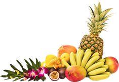 If it's not in the fruit, it's not margie's<em>™</em>