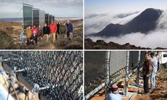 The 'fog catchers' in the Sahara that can make water out of THIN AIR #DailyMail