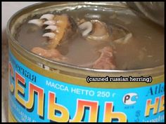 [Bizarre Food]  How about some canned herring with razor sharp teeth still intact? O_O Would ya look at the teeth on that ****!?? Hopefully you'll bite into it before it bites into YOU. O_o