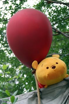 Zoom Around the Park with Tsum Tsum - Winie the Pooh