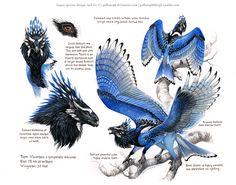 Custom Aequis: Steller's Jay by pallanoph.deviantart.com on @DeviantArt