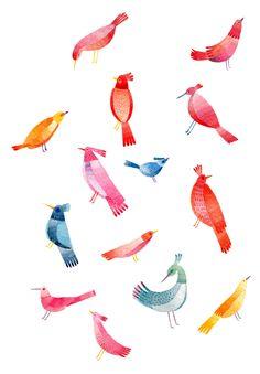 mlle colibri