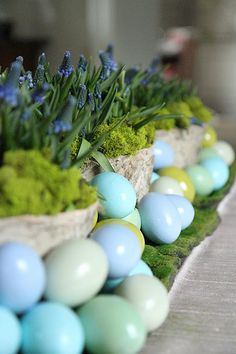 Easy and Beautiful Easter Centerpieces with Spring Bulbs Hoppy Easter, Easter Eggs, Blue And Green, Diy Ostern, Easter Parade, Easter Celebration, Easter Holidays, Easter Table, Easter Brunch