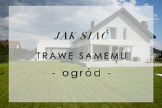 Sadzenie Roślin w Donicach Tarasowych — HOUSE LOVES Beach, Water, House, Outdoor, Home Decor, Water Water, Outdoors, Homemade Home Decor, Aqua