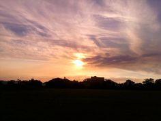 sunset @centennial park NSW