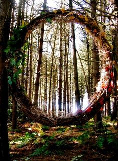 The most striking thing about coming across this sort of thing in the woods, and art installations  in remote areas in general, is that someone went through tremendous effort to create something that a very specific type of person will ever see.  This is art geared at a tremendously specific niche.