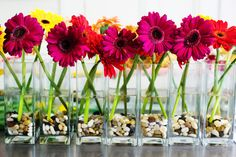 I love Gerbera daisies. I like this concept for centerpieces. However I would like to change it up a bit. I would have a round bowl with silver rocks/crystals. The bowl would be filled with water and a stemless purple Gerbera daisy would float on top. Daisy Centerpieces, Summer Wedding Centerpieces, Unique Centerpieces, Table Centerpieces, Wedding Table, Diy Wedding, Wedding Flowers, Wedding Decorations, Centerpiece Ideas
