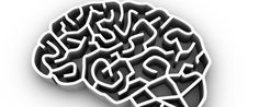 How Relevant Is Neuroscience to Your Organization? - http://brainmysteries.com/relevant-neuroscience-organization/