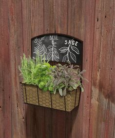 Take a look at this Chalkboard Wall Planter today!