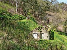 Hike into the quiet, cool Horsnell Gully and Giles Conservation Park to explore the Giles Ruins and the Reedbeds, and spot koalas along the way. Conservation, Abandoned, Trail, Hiking, Australia, Explore, Park, House Styles, Places
