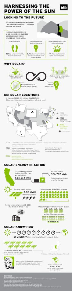 Solar Infographic: Harnessing the Power of the Sun