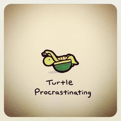 Funny Animal Memes, Funny Animals, Cute Turtle Drawings, Turtle Quotes, Disney Drawings Sketches, Cute Turtles, Tmnt, Tortoise, Planners