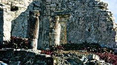 Mayan Ruin.