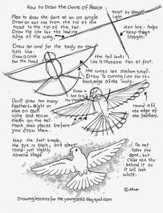 How to draw the dove of peace worksheet. see more at my blog: http://drawinglessonsfortheyoungartist.blogspot.com/