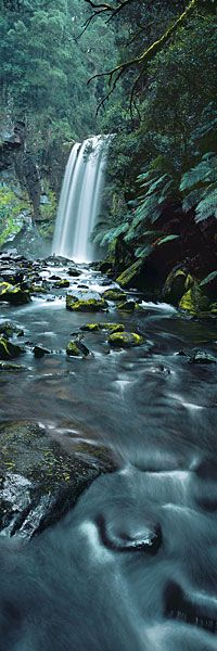 Tranquil Haven Captured along the river's length, this vertical photograph of Hopetoun Falls takes the viewer into the very midst of the water's flow.