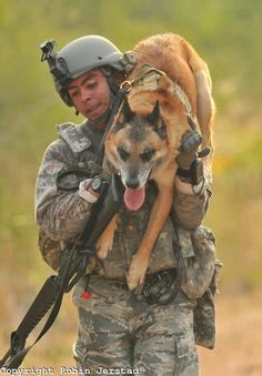 God Bless our Military War K9 Soldiers & Handlers!