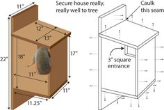 squirrel+house+plans (how to build a tree house for squirrels) Squirrel Feeder Diy, Squirrel Home, Bird House Plans, Bird House Kits, How To Build Abs, Home Building Tips, Bird House Feeder, Bird Feeders, Bird Houses Diy