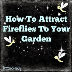"(link) Attract Fireflies (Lightening Bugs) to Your Garden ~ which are becoming more & more scarce. READ her page for listing of 7 needs (things we can do to help) these little critters. ~~~HINT: above all else, NO PESTICIDES (or chemicals) ~ harmful to ALL living critters, even the good buggies. ~~~ NOTE: fireflies may not be a so-called ""beneficial"" insect, but neither are they a pest, to gardens, but they sure are beautiful at night!"