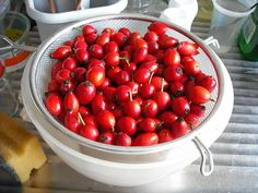 Things to do with rose hips. These are yet to be trimmed, both ends need cutting off to remove stems and petal ends.