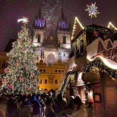 Em clima de natal em Praga.   Use a #filtravell em seus posts de viagem turismo etc...   Praga / República Checa   In a Christmas mood in Prague.   Use #filtravell in your travel tourism posts etc...   Prague / Czech Republic  : @inn_praha #ftll #europa #europe #repúblicacheca #republicacheca #czechrepublic #viagem #lille #férias #ferias #travel #traveltrip #czechrepublictrip #repúblicachecatrip #republicachecatrip #praga #prague #Christmas #bestplace #lugarincrivel #filtravell10k…
