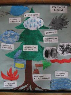 III. tř. - Lidské aktivity a problémy životního prostředí