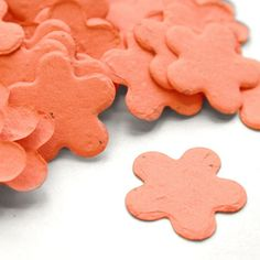 Five Petal Plantable Seed Confetti in Coral Value Pack (two 350 piece bags)