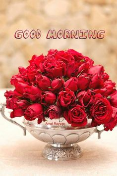 Good Morning Roses, Good Morning Happy Sunday, Latest Good Morning, Good Morning Images Hd, Morning Wish, Beautiful Status, Wine Wallpaper, Morning Qoutes, Happy Friendship Day