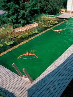 Michael Littlewood and Total Habitat in the US are the founding members of the nascent Natural Swimming Pool/Pond Association. The small association has launched their own certification program to provide consumers with greater confidence. Remember it is possible to convert a conventional swimming pool to a natural one. Add a shallow plant area around the original (or in a sub-divided section) for natural purification.