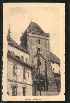 City Žatec / Saaz | Ústecký kraj / Region Aussig | old Postcards Old Postcards, Prague, Czech Republic, World, City, Painting, Postcards, Painting Art, Cities