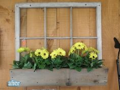 old window + window box = super cute! ...for shed?
