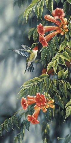 """""""Summer-Ruby Hummingbird"""" - Rosemary Millette"""
