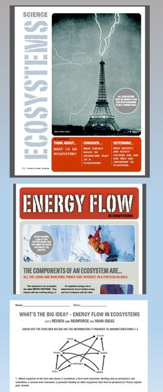 Engaging introduction to ecosystems and energy flow in ecosystems. Magazine style layout with lots of pictures ensure student engagement! Conclusion questions with full teacher key. Click to see more!