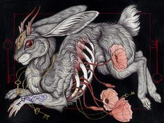 Contemporary Mythology: the Art of Caitlin Hackett