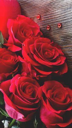 Red Flower Bouquet, Red Rose Flower, Beautiful Rose Flowers, Amazing Flowers, Red Flowers, Red Roses, Red Rose Pictures, Flower Pictures, Rose Flower Wallpaper