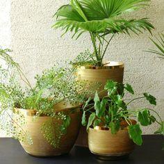 Brass Ridged Planter Tall Planters, Outdoor Planters, Brass Planter, Ceramic Planters, Plastic Pots, Plate Design, Plates On Wall, Flower Pots, Flowers