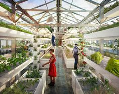 antonio scarponi combines urban farming with industrial rooftops