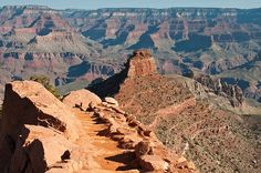 My newest obsession: hiking the Grand Canyon.  Trail to O'Neill Butte by OregonTrekker, via Flickr