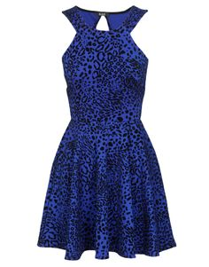 Animal Print Open Back Skater Dress in Royal Blue £ 22.95 #chiarafashion