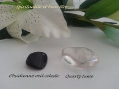Camille ambiance nature Camille, Boutique, Boutiques