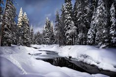 In December I spent ALOT of time on my snowshoes! Scenes like this just kept me excited and motivated for more.   This is from one of my favorite little areas in Big Bend California. I return again and again because it's gorgeous interesting and ever-changing. You'll be seeing more of it soon!  It alters DRAMATICALLY from season to season... from its own rolling hills of snow in winter (if we're lucky!) to raging waters during the spring thaw to torching your feet in the dry summer heat of…