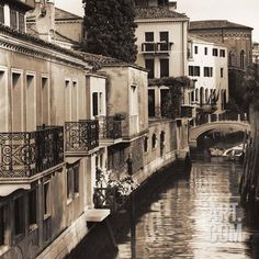 Ponti di Venezia No. 4 Art Print by Alan Blaustein at Art.com