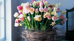 Spring Centerpieces and more on MarthaStewart.com